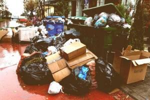 Утилизация мусора и его вывоз в Москве СЗАО